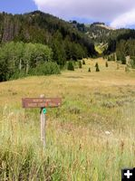 Sheep Creek trail